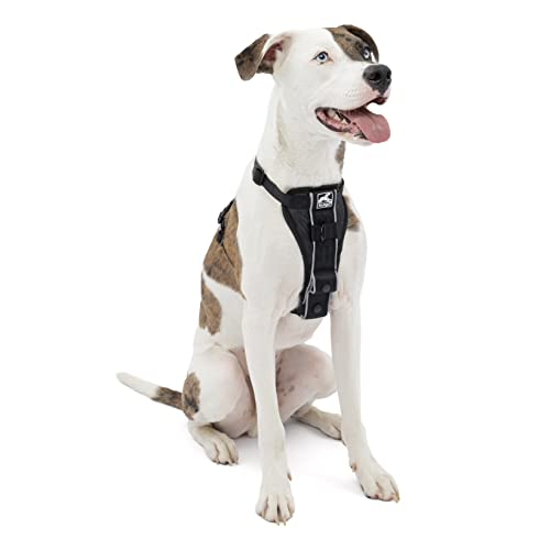 Kurgo Dog Harness   Pet Walking Harness   Medium   Black   No Pull Harness Front Clip Feature for...