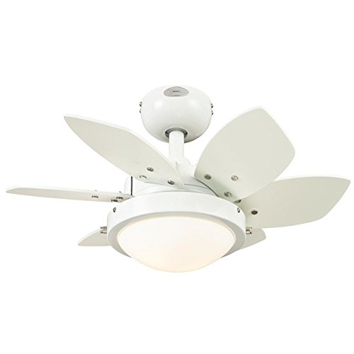 Westinghouse Lighting 7247100 Quince Two-Light Reversible Six-Blade Indoor Ceiling Fan, 24-Inch,...