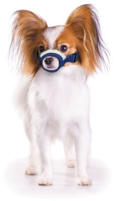 Zittop Cozy Quick Muzzle Four Flags X-Small, Blue