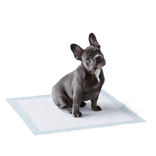 Amazon Basics Dog and Puppy Leak-proof 5-Layer Potty Training Pads with Quick-dry Surface, Regular...