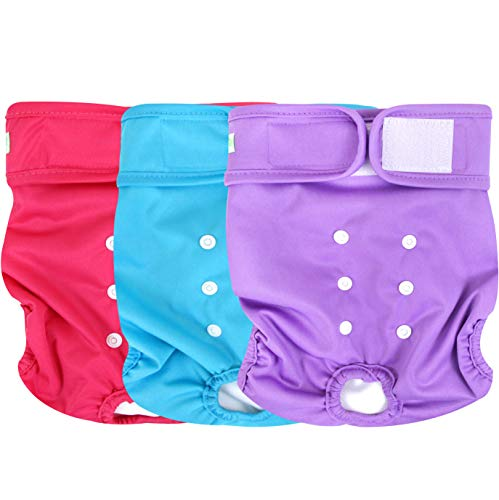 Wegreeco Washable Reusable Premium Dog Diapers, Medium, Bright Color, for Female Dog, Pack of 3