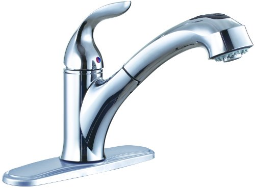 Premier 126969 Waterfront Single-Handle Kitchen Faucet with Pull-Out Spout, Chrome