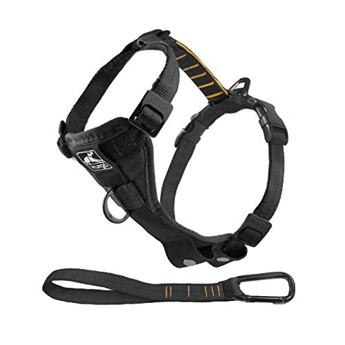 Kurgo Dog Harness | Pet Walking Harness | Medium | Black | No Pull Harness Front Clip Feature for...