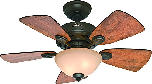 Hunter Fan Company Hunter 52090 Transitional 34``Ceiling Fan from Watson Collection Dark Finish,...