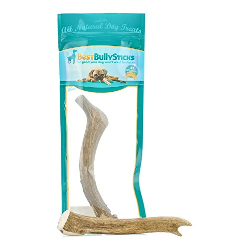 Best Bully Sticks USA 8-9 Inch Deer Antler Dog Chew (1 Antler)