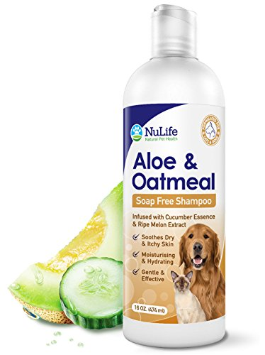 Oatmeal Shampoo For Dogs With Soothing Aloe Vera, Suitable For All Pets, With Cucumber Essence and...