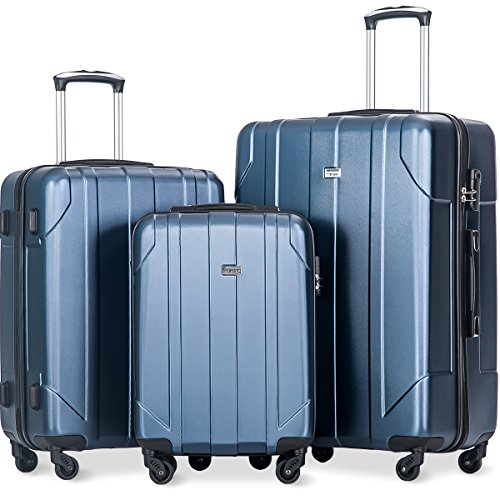 Merax 3 Piece P.E.T Luggage Set Eco-friendly Light Weight Spinner Suitcase (Lavender)