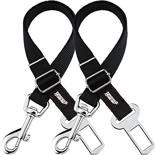 Friends Forever 2-Pack, Adjustable Black Nylon Dog Cat Car Seat-Belt, Vehicle Tether, Restraint Lead...
