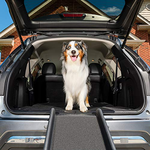 PetSafe Happy Ride Folding Pet Ramp, 62 in, Portable Lightweight Dog and Cat Ramp, Great for Cars,...