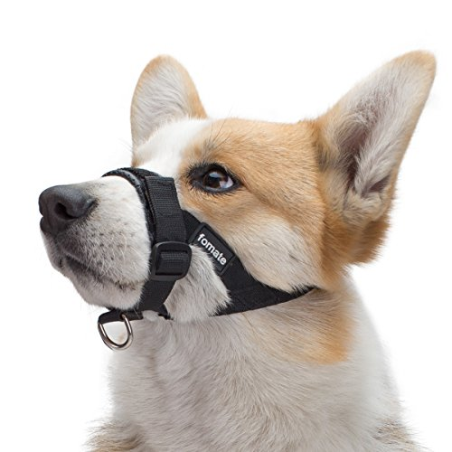 FOMATE Dog Muzzle, Quick fit Gentle Head Collar Walk Training Loop Stop Pulling Halter, Black Small