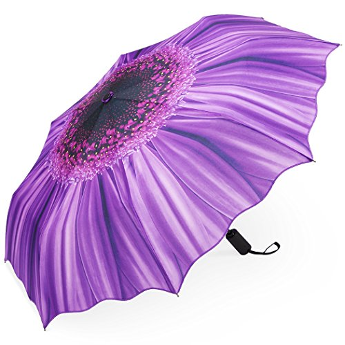 Plemo Automatic Umbrellas, Windproof Purple Daisy Design Compact Folding Umbrellas with Anti-Slip...
