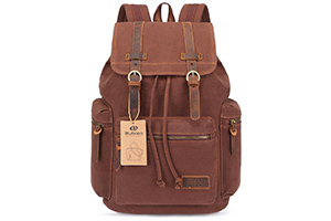 Top 10 Best Leather Backpack Purse of 2019 Review