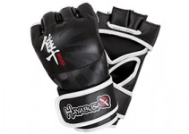 Top Ten Best MMA Gloves Reviews