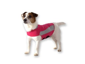 Thundershirt Pink Polo