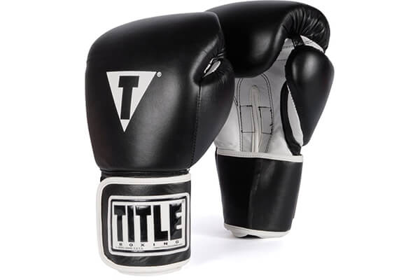 TITLE Boxing Training Gloves