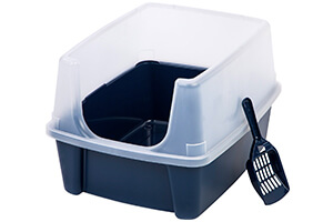Top 10 Best Dog Litter Boxes for Potty Training of 2019 Review
