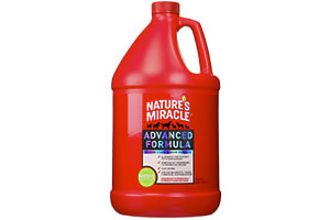 Top 10 Best Dog Odor & Stain Removers Reviews