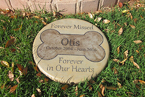 Top 10 Best Personalized Pet Memorial Garden Stones of 2020 Review