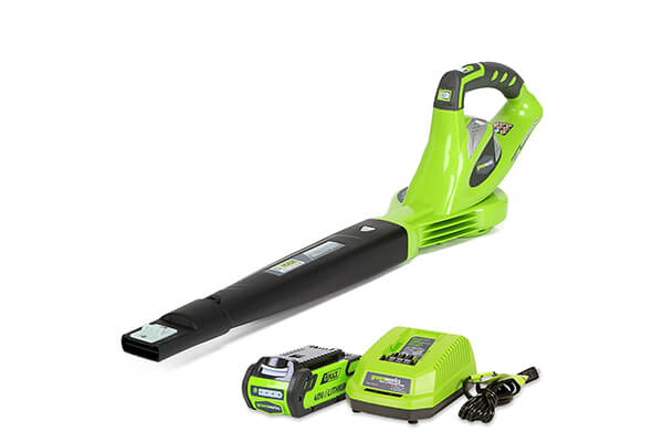 GreenWorks Variable Speed Cordless Blower