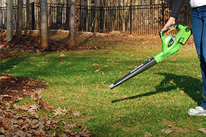 Top 10 Best Cordless Leaf Blowers in 2018 Reviews Our Great Products