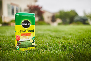 Top 10 Best Fertilizer For Lawns In Summer Reviews