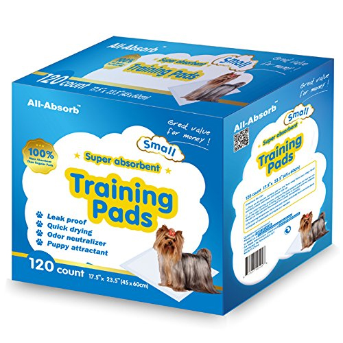 Best Pee Pee Pads For Dogs