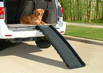 The Best Dog Ramps for Cars