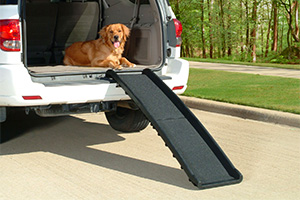 Top 10 Best Dog Ramps for Cars of 2021 Review