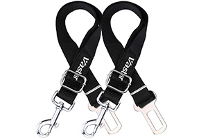 Top 10 Best Dog Harness for Traveling of 2021 Review