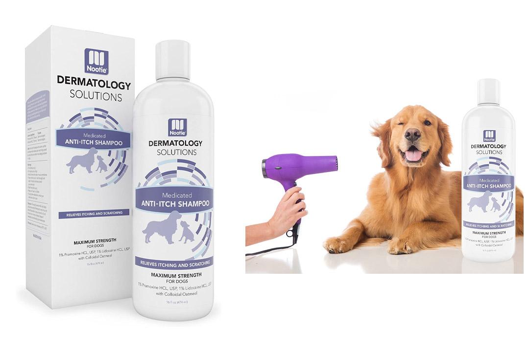 Dog Shampoo Oatmeal Medicated
