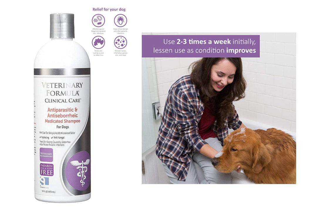 SynergyLabs Veterinary Formula Clinical Care