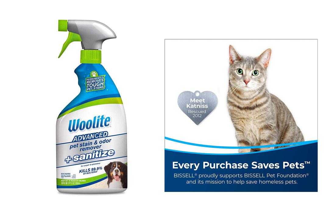 Woolite Advanced Pet Sanitize