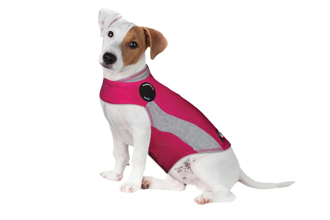 Thundershirt Pink Polo
