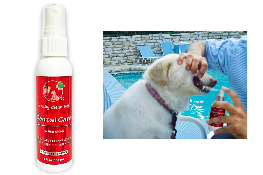 All Natural Premium Dental Care Spray