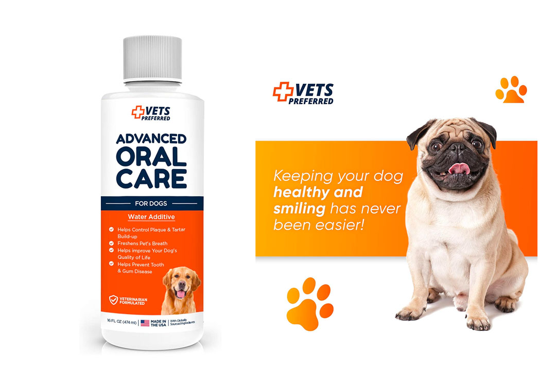 Advanced Oral Care for Dogs (& Cats) - Veterinarian Grade, Premium Solution for Bad Breath Dogs