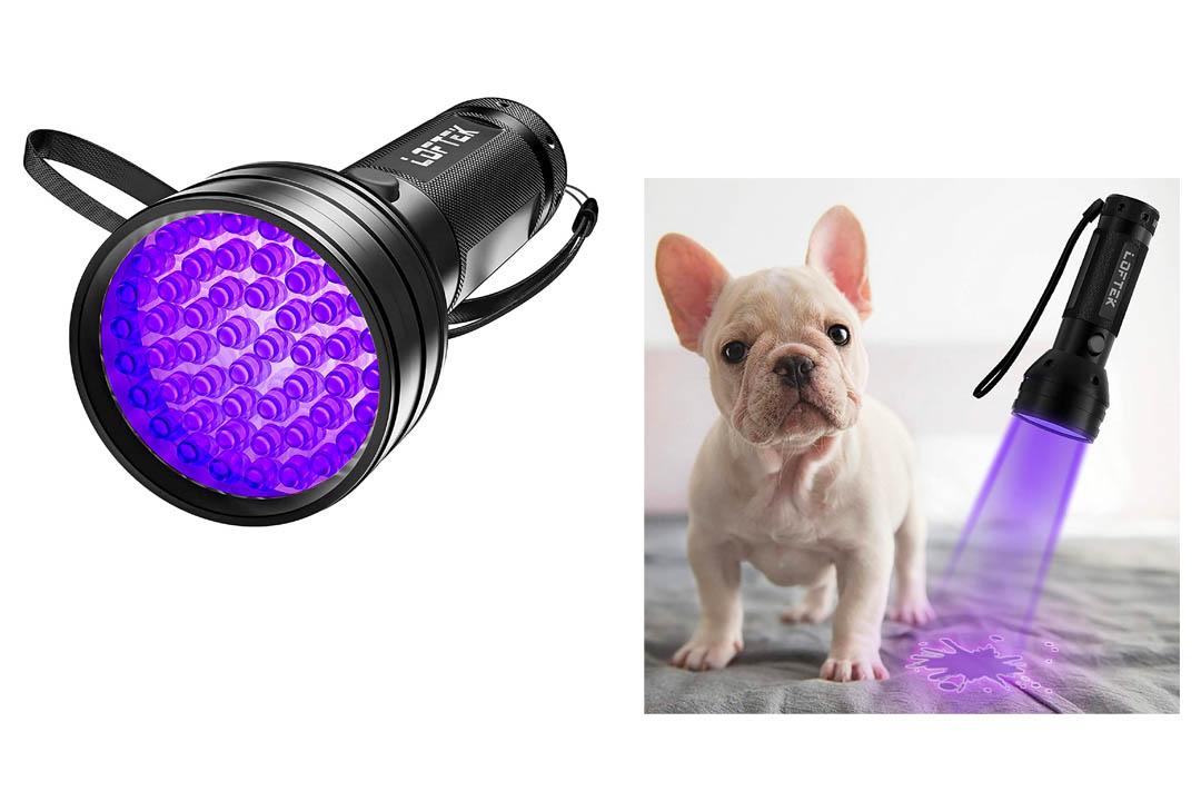 LOFTEK 51 UV Ultraviolet Flashlight 395 nM LED Handheld Blacklight Perfect Urine and Bed Bug Detector