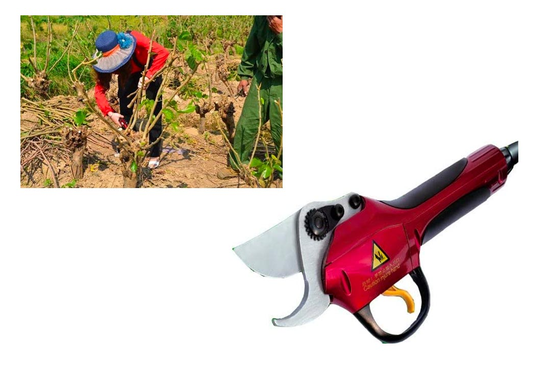 Lithium Battery High-Speed Electric Grape Pruning Shears