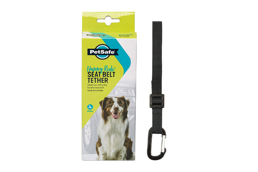 PetSafe Solvit Deluxe Car Safety Tether, Adjustable Tether Works With PetSafe Harness