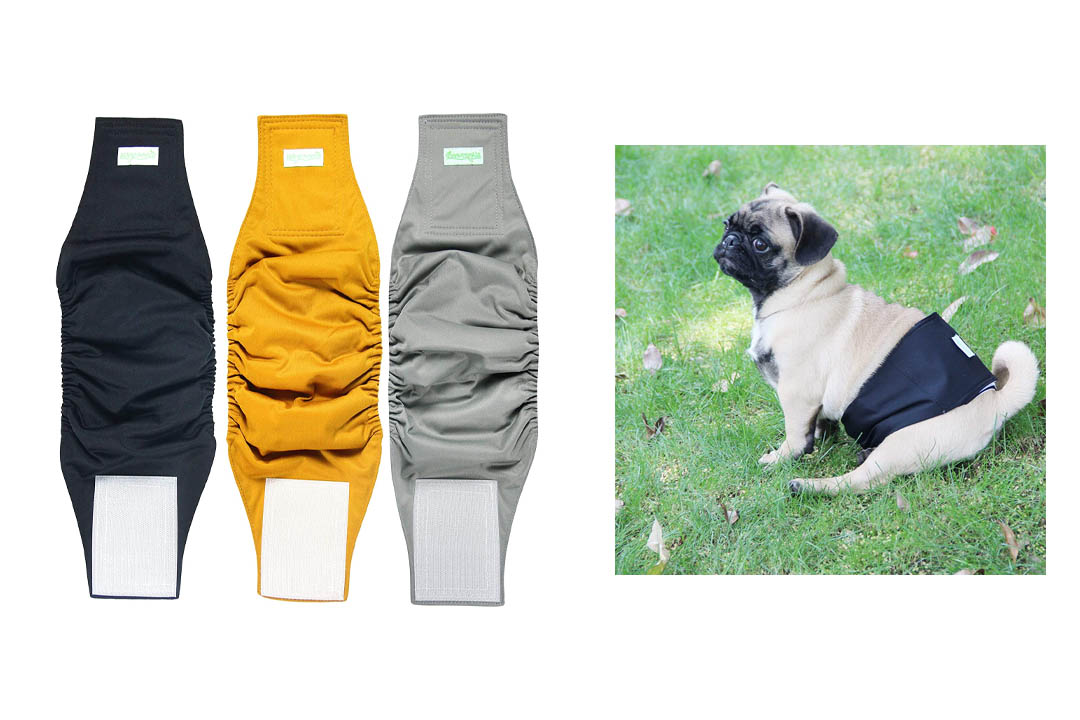 We Greece Washable Male Dog Diapers